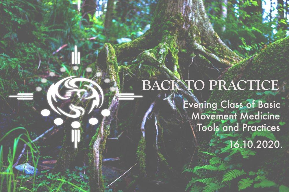 Večernji sat Movement Medicine alata i praksi: POVRATAK U PRAKSU